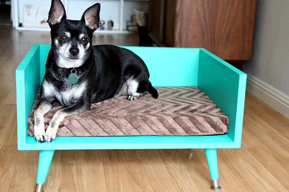 Diy Mid Century Style Pet Bed With A Touch Of Star Trek