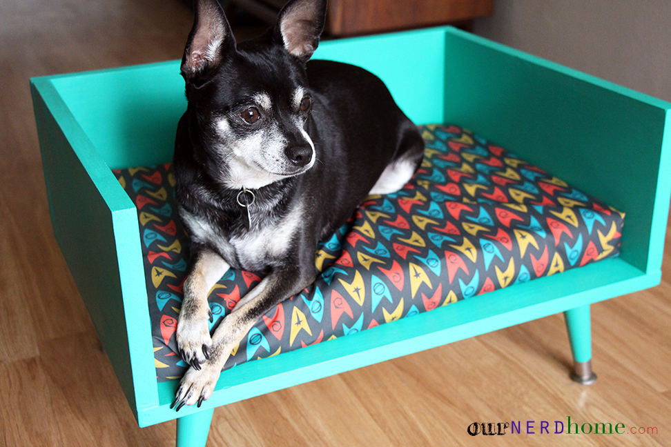Diy Mid Century Modern Pet Bed